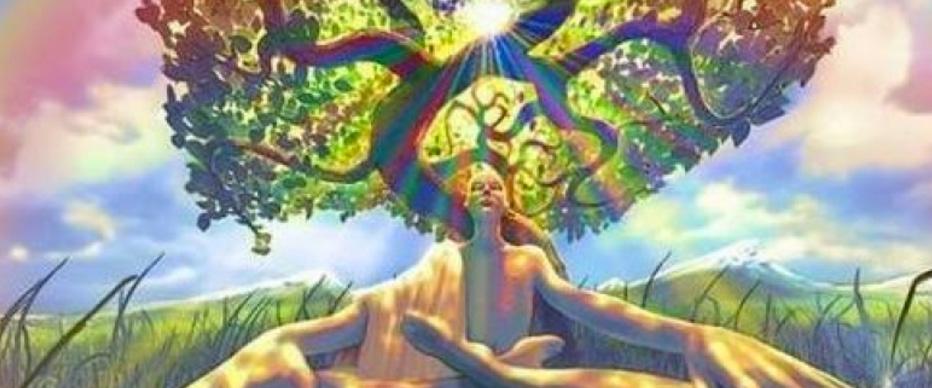 meditating-under-tree
